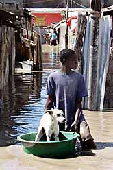 En pojke med sin hund efter stormen på Haiti. Foto: Ariana Cubillos/PrB