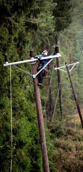 Träden har knäckt elledningarna på många ställen i Sverige. Tusentals människor kommer att vara utan ström länge. Foto: Niklas Larsson/PrB