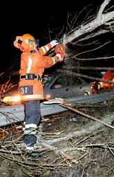 Helgens oväder skapade problem i trafiken. Bland annat blåste träd ned på E20 söder om Alingsås. Foto: Niklas Larsson/PrB.