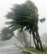 Orkanen Wilma ställde till med stora skador i Mexiko. Foto: Pressens Bild