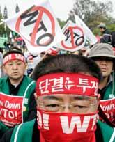 Massor av folk har samlats för att protestera mot WTO-ländernas möte i Hongkong. Foto: Lee Jin-man/PrB