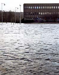 Partille är en av de platser som drabbats av stora översvämningar. Foto: Björn Larsson Rosvall/Scanpix