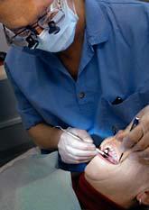 Det som utbildar sig till tandläkare nu kommer säkert att få jobb om några år. Foto: Tomas Oneborg/SvD/Scanpix