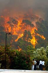 Många har dött i skogsbränderna i Grekland. Foto: Petros Giannakouris/Scanpix