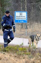 Polisen letar efter den försvunna flickan i Dalarna. Foto: Lars Pehrson/Scanpix