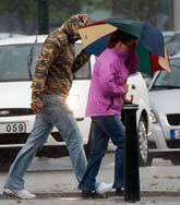 Stormen slog till värst mot Skåne. Foto: Johan Nilsson/Scanpix