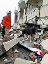 Räddningsarbetare söker efter döda efter jordbävningen. Foto: Dita Alangkara/Scanpix