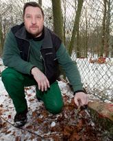 Johan Lindström visar var vargarna bet sönder staketet. FOTO: Drago Prvulovic/SCANPIX