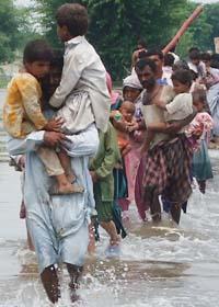 Miljoner människor har fått fly undan vattnet i Pakistan. Foto: Shiekh Saleem Raza/AP/Scanpix