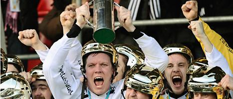 Sandvikens spelare jublar över SM-guldet i bandy. Foto: Claudio Bresciani/Scanpix.