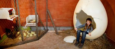 Lea sitter i ägget på nya Lill-skansen i Stockholm. Foto: Jessica Gow/Scanpix