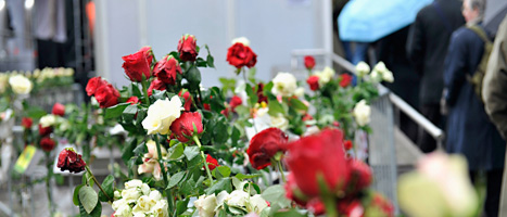 Människor har lagt blommor utanför domstolen i Oslo. Folk vill hedra dem som dödades på Utöya och i Oslo centrum den 22 juli förra året.
