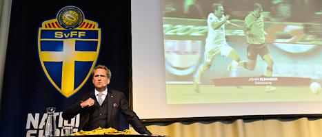 Anfallaren Johan Elmander kommer att kunna spela i EM,  säger landslagets ledare. Foto: Anders Wiklund/Scanpix