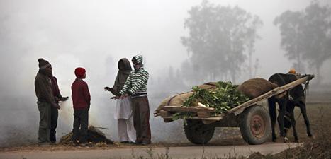 Människor i den indiska staden Jammu värmer sig vid en eld. Kylan har dödat många människor. Foto: Channi Anand/Scanpix