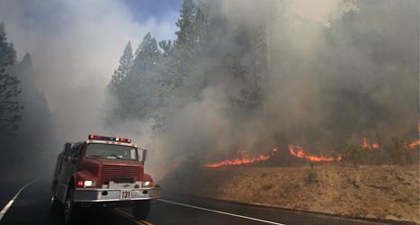 En brandbil kör förbi brinnande träd nära nationalparken Yosemite i USA. Foto: Jae C. Hong/AP/Scanpix.