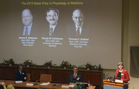 James E. Rothman, Randy W. Schekman och Thomas C. Südhof  får Nobelpriset i medicin. Foto Janerik Henriksson/TT