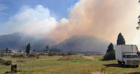 Det är många skogsbränder i Australien just nu. Foto: AP/TT