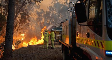 Flera hundra hus har förstörts i bränderna nära staden Sydney i Australien. Foto: Evan Collins/TT.