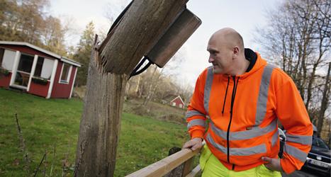 Många träd blåste ner i stormen i södra Sverige. Nu måste träden tas bort och el-ledningar lagas. Foto: Johan Nilsson/TT.