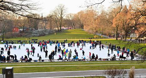Folk åker skridskor i Vasaparken i Stockholm. Det är snöfritt och varmt. Foto: Henrik Montgomery/TT.