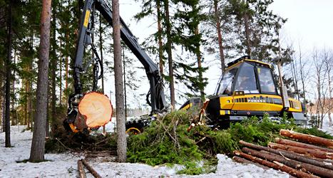 Det blir svårt för de tunga maskinerna att jobba i skogen när marken blir mjuk. Foto: Robert Granström /TT