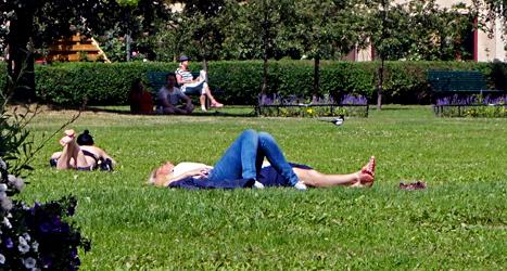 Människor i en park i Stockholm. Foto: TT.