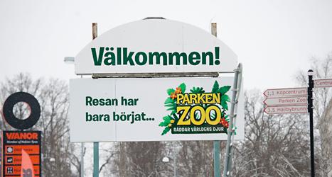 Parken Zoo måste betala 150 tusen kronor i böter. Foto: Fredrik Sandberg/TT