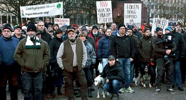 en demonstration för vargjakt