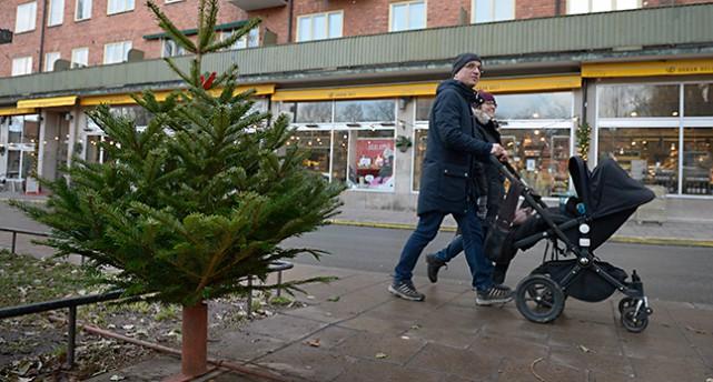 En julgran på Nytorget i Stockholm.