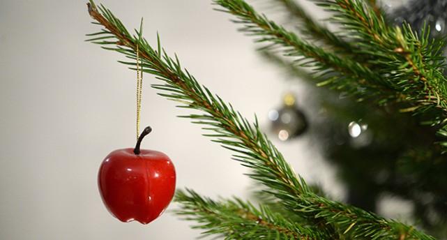 En julgran
