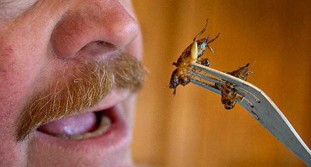 En man har insekter på en gaffel och är på väg att stoppa dem i munnen.