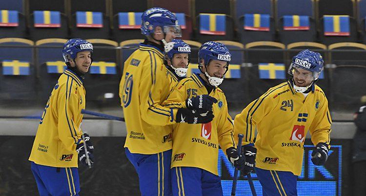 Svenska spelare firar ett mål i VM-matchen mot Tyskland.