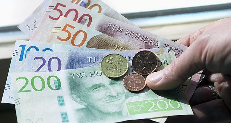 En hand håller i sedlar och mynt