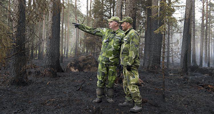 Militärer i en bränd skog
