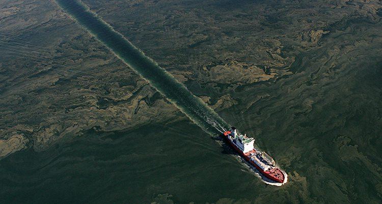 Ett fartyg kör genom alger.