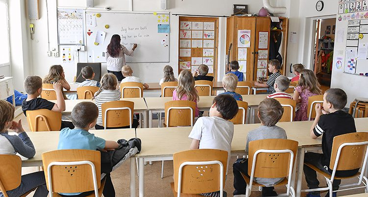 En lågstadieklass i ett klassrum. Barnen syns bakifrån. De sitter vid sina bänkar. Längst fram i klassrummet står läraren och undervisar. Hon skriver på vita tavlan.