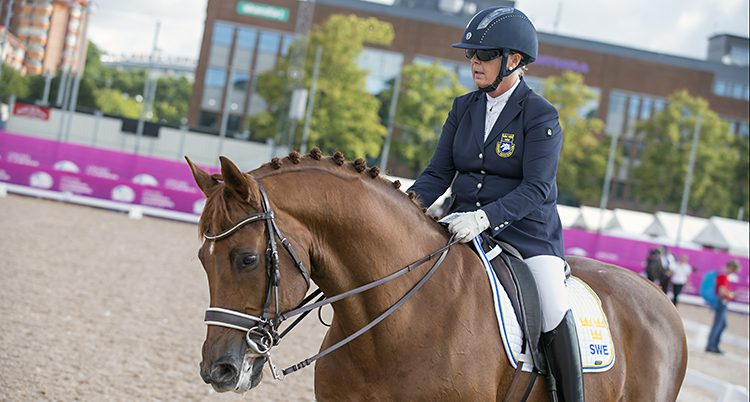 Louise Etzner Jacobsson och hästen Zernard.