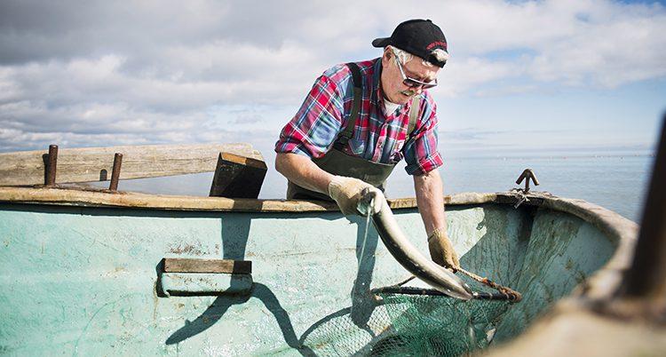 Fiskaren Sven-Erik Tenghagen