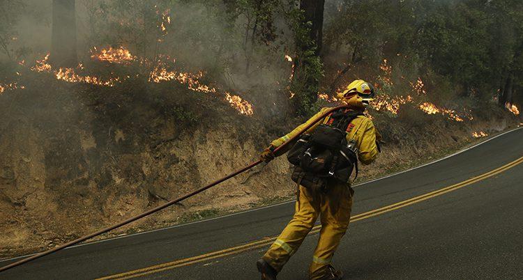 En brandman släpar en vattenslang.