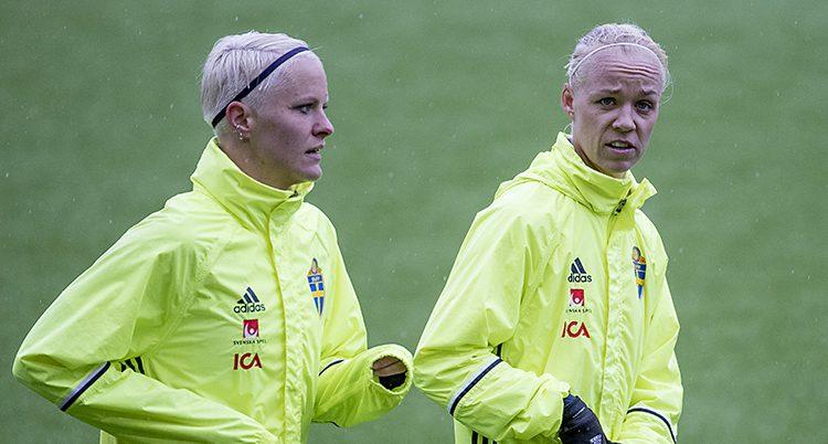 Det svenska laget träna