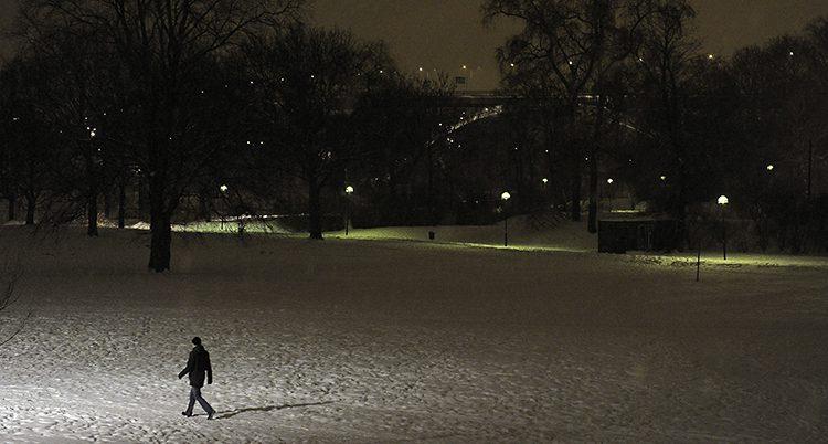 En bild på en mörk park. Den är lite upplyst av några gatlampor. En mörk figur ses gå i parken.