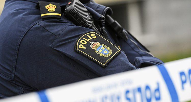 En polis