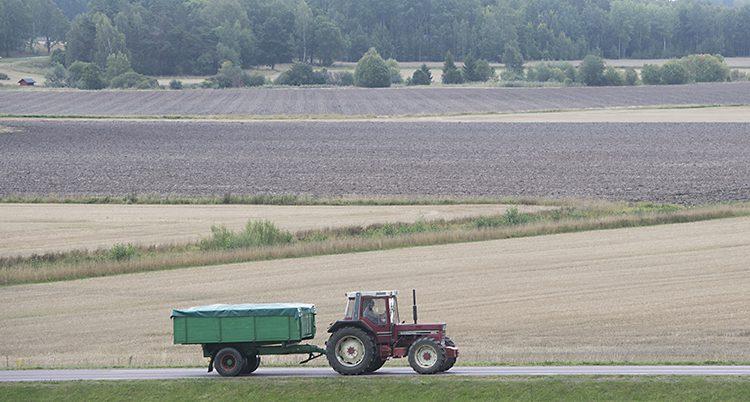 En traktor kär på en väg mellan pkrar
