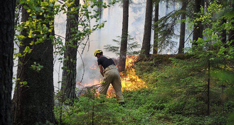 Branden i Molkom.