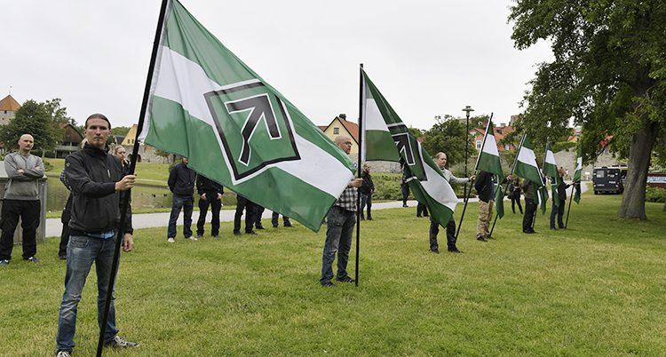 Nazister i Almedalen