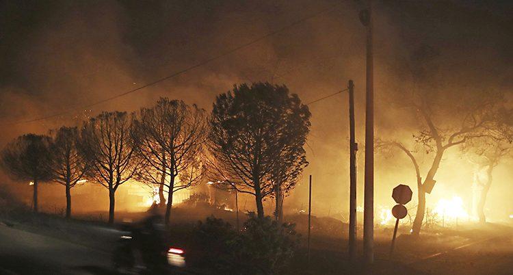 Skogen brinner i Grekland