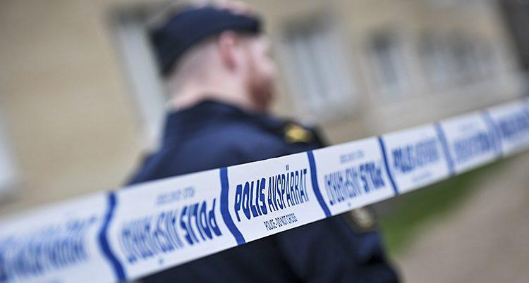 Partierna lovar fler poliser