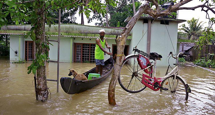 Översvämning i Indien