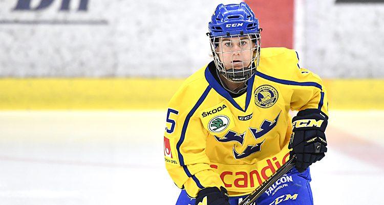 Lisa Johansson i Sveriges lag