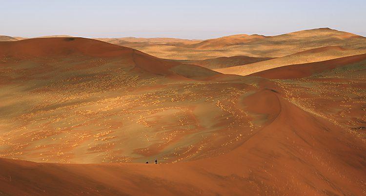 Öknen i Namibia.